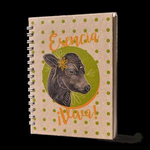 Cuadernos Anillados – Equilibrio